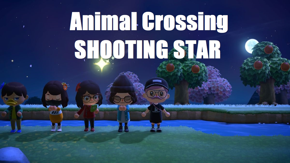 Animal Crossing New Horizons Shooting Star Guide