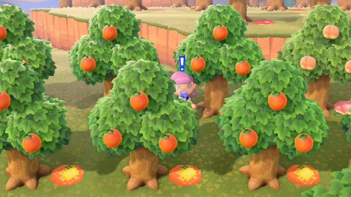 how to plant tree in animal crossing new horizons